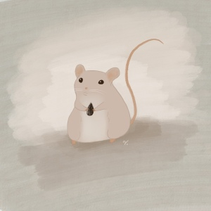 Chubby Mouse